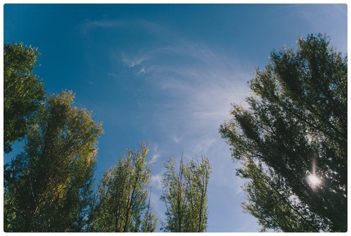 annie gerber cornville az wedding sedona picnic_0002.jpg